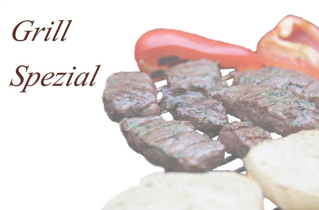 Logo Grill Spezial