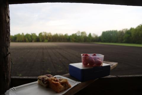 Brotzeit mit Radieschen und Kuchen bei fantastischer Aussicht. Gibt es Besseres als das? Nicht wirklich.