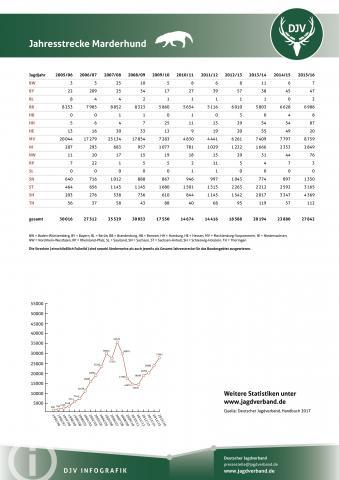 Marderhund: Jagdstatistik 2005-2016