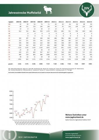 Muffelwild: Jagdstatistik 2005-2016