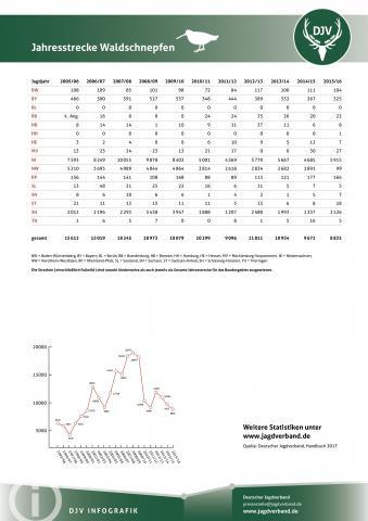 Waldschnäpfe: Jagdstatistik 2005-2016