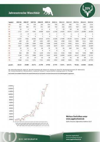 Waschbär: Jagdstatistik 2005-2016