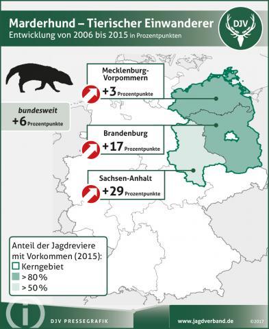 Marderhund: Verbreitung 2006-2015
