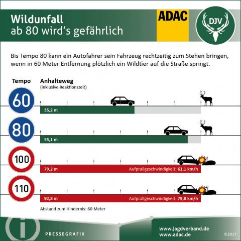 Wildunfall: Bremsweg und Aufprallgeschwindigkeit
