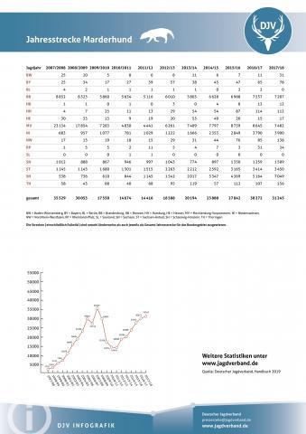 Marderhund: Jagdstatistik 2007-2018
