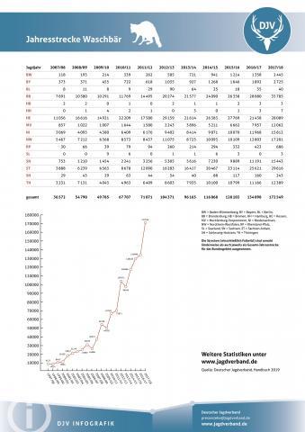 Waschbär: Jagdstatistik 2007-2018