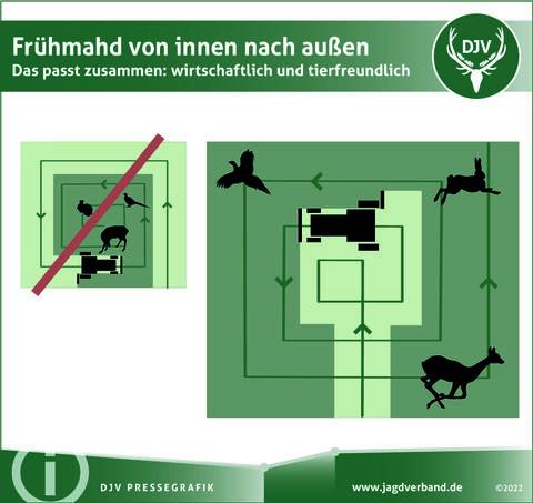 Frühmahd von innen nach außen - Das passt zusammen: wirtschaftliche und tierfreundlich