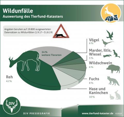 Wildunfälle - Auswertung des Tierfund-Katasters