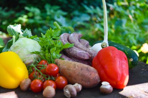 Die Hauptzutaten für die Schaschlik-Spieße: Wildwurst, Paprika, Champignons, Zucchini, Kohlrabi, Grillkäse... es kann natürlich frei nach Lust und Laune variiert werden.  (Quelle: Kapuhs/DJV)