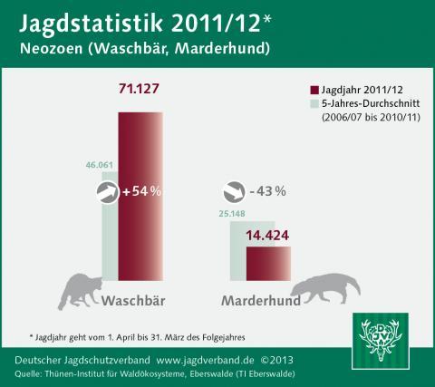 Waschbär/Marderhund: Jagdstatistik 2011/12