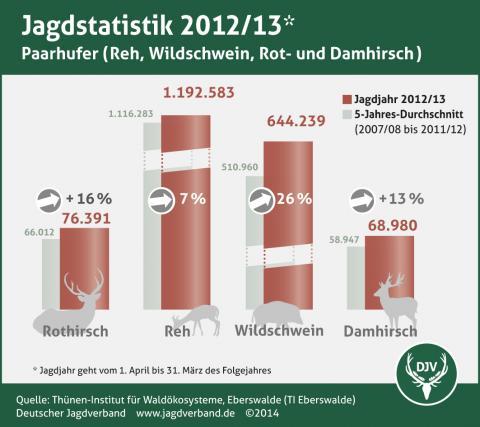 Schalenwild: Jagdstatistik 2012/13