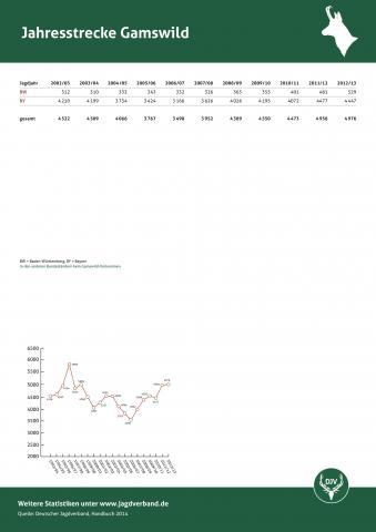 Gamswild: Jagdstatistik 2012/13