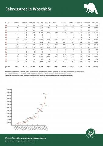 Waschbär: Jagdstatistik 2012/13