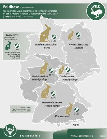 Monitoring: Population Feldhasen 2015