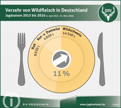 Statistik Wildbretverzehr von Schalenwild in Deutschland 2015/16