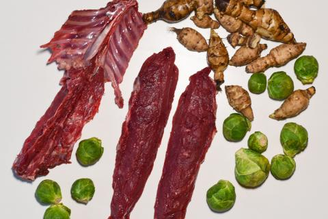 Die Hauptzutaten für das Rezept: Hasenrücken, Topinambur und Grünkohl.  (Quelle: Kapuhs/DJV )