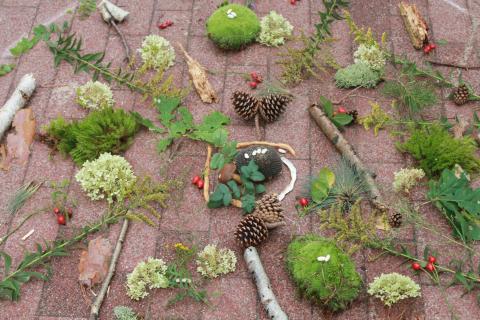 Mandalas aus Naturmaterialien