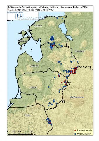 Afrikanische Schweinepest Verbreitung in Europa 2014