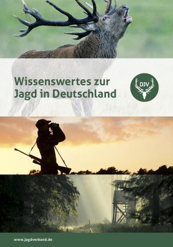 Wissenswertes zur Jagd in Deutschland