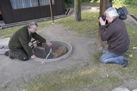 Hundeausbildung in Schliefenanlage; Ort: Zehdenick