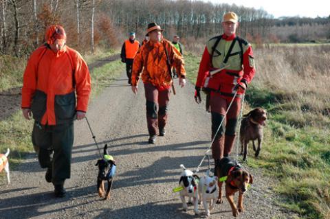 Leppmann mit Stöberhunden in Signalkleidung