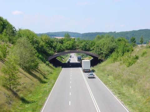Grünbrücke Überlingen im Sommer