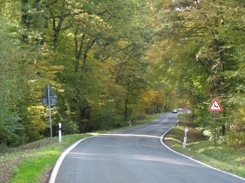 Wildunfall gefährdete Straße