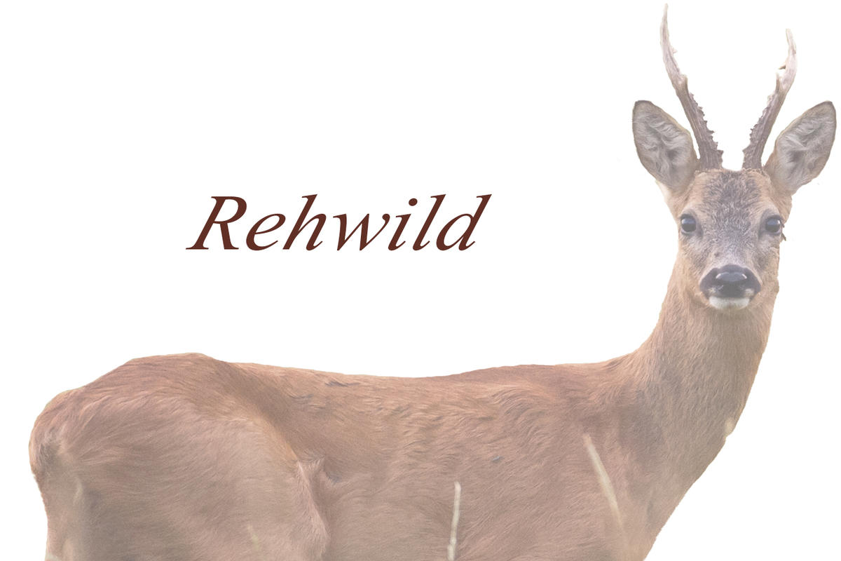 Geschmorte Rehkeule Wild Auf Wild